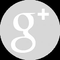 logo 2 google plus gris rond plein
